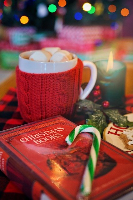 Christmas bookImage by Jill Wellington from Pixabay